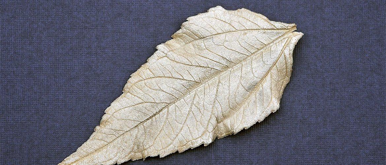Dieses Blatt aus Art Clay Silber enstand aus einem grünen Blatt aus dem Garten